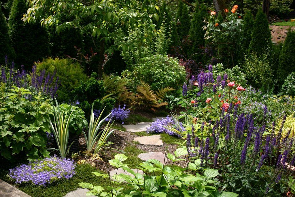 Gardens-we-Maintain00012