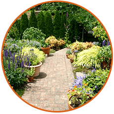 Garden Maintenance Example by Smiling Gardens